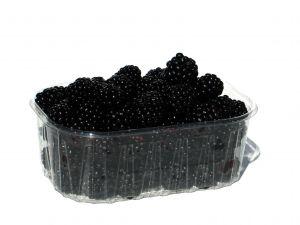 1060405_blackberries_2