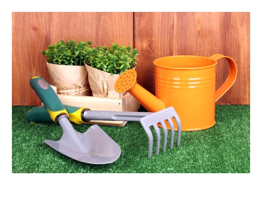 Jak założyć trawnik czyli poradnik zakładanie trawnika – planowanie krok po kroku